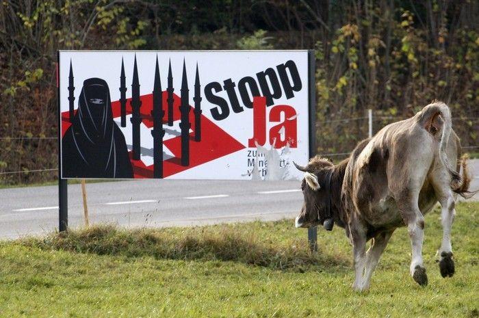 Kuh attackiert Anti-Minarett Plakat der SVP.